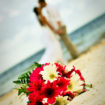 Punta Cana Wedding 16