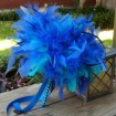 Bright blue feathers