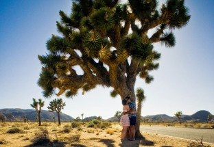Joshua-Tree-Honeymoon-Shoot-13