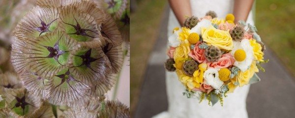 Unique Wedding Flowers To Make Your Bouquet Stand Out