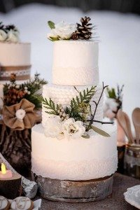 rustic winter shoot with woodsman details - wedding cake