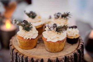 rustic winter shoot with woodsman details - cupcakes