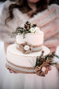 rustic winter shoot with woodsman details - cake