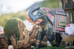 A Colourful and Glamorous Indian Wedding - Elephant Detail