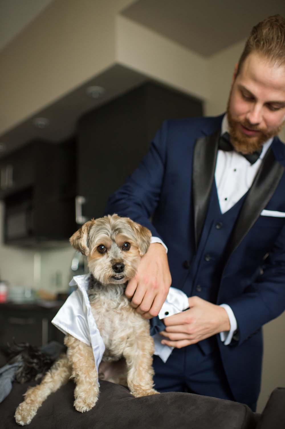 A Classic Vintage inspired Wedding at the One King West in Toronto - Groom and Dog